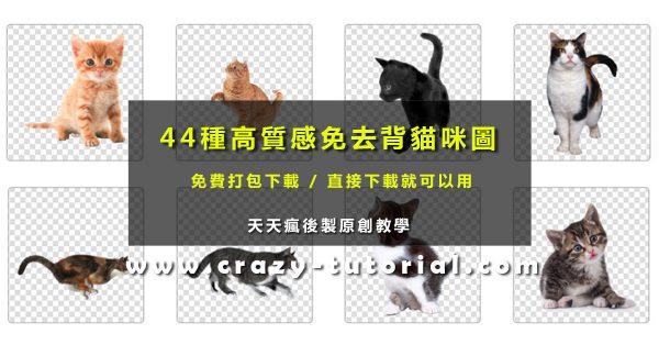 【貓咪素材】44種免去背貓咪圖庫免費打包下載 / 貓咪PNG素材圖案