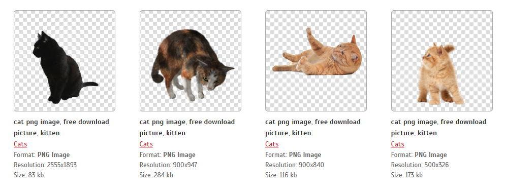 【猫咪素材】44种免去背猫咪图库免费打包下载 / 猫咪PNG素材图案