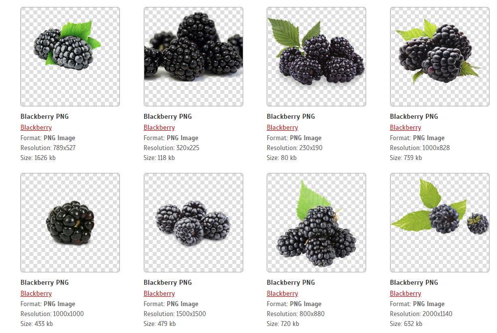 【水果素材】1270套水果图片下载,PNG水果图案都已经去背好了