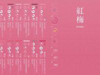 [ 日系色彩 ] NIPPON COLORS 日本傳統色調配色 / 日本色彩學