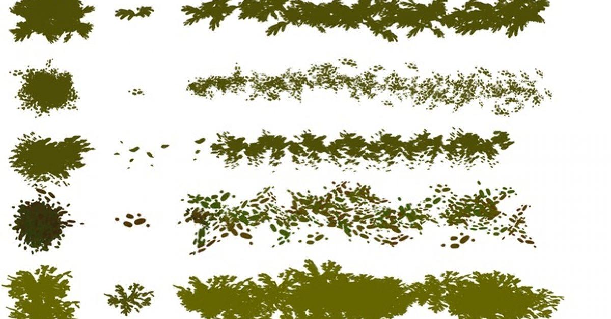 【樹葉筆刷】5款專業版Photoshop樹葉筆刷,森林樹叢筆刷推薦款