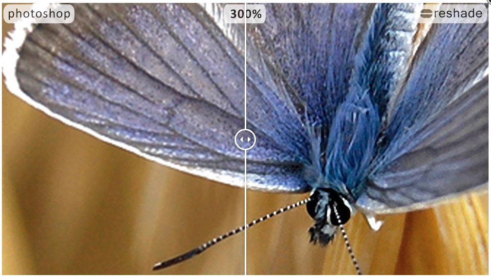 【提高解析度】如何将照片解析度提高?  用这套照片解析度调整软体就对了。
