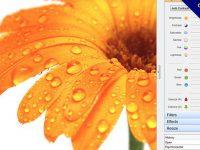 PC Image Editor相片編輯軟體,自動調整色階、對比和亮度。