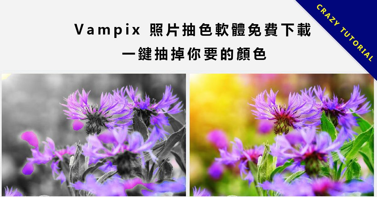 Vampix 照片抽色軟體免費下載,一鍵抽掉你要的顏色。