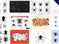 [ 蜘蛛圖片 ]  40套 illustrator 蜘蛛圖案下載 / 蜘蛛網圖片