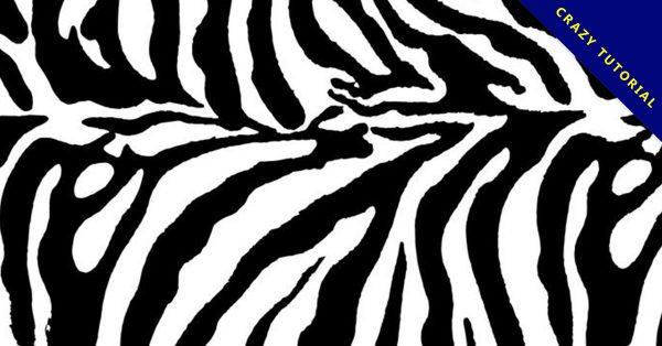 【斑馬圖案】40套 Illustrator 斑馬圖片下載,斑馬圖畫推薦款
