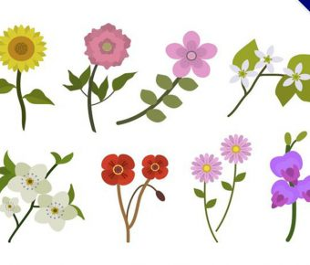 【花素材】32套 Illustrator 花壁紙下載,花背景推薦款
