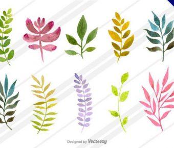 【葉子圖案】34套 Illustrator 葉子剪影下載,葉子手繪推薦款