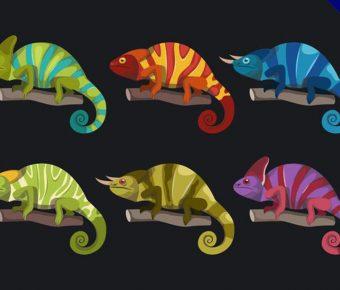 【蜥蜴卡通圖案】34套 Illustrator 變色龍卡通圖下載,蜥蜴圖騰推薦款