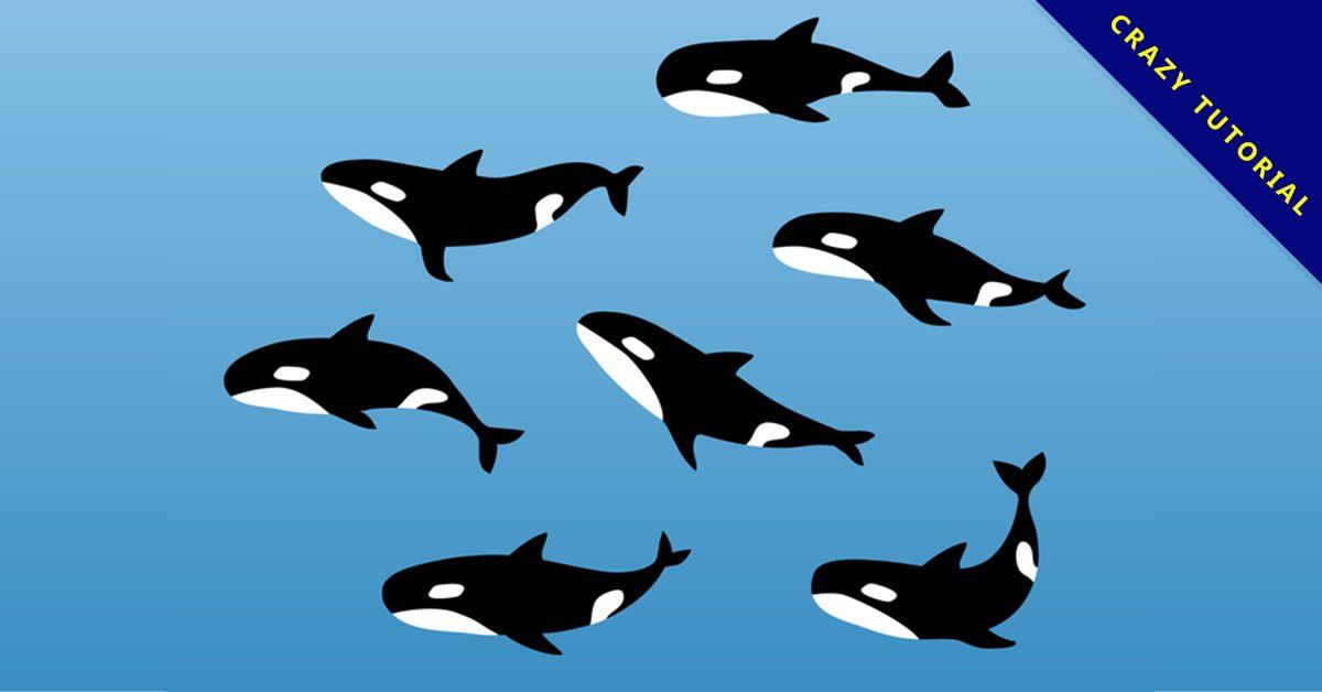 【鯨魚q 版圖】36套 Illustrator 鯨魚圖案下載,鯨魚卡通圖推薦款