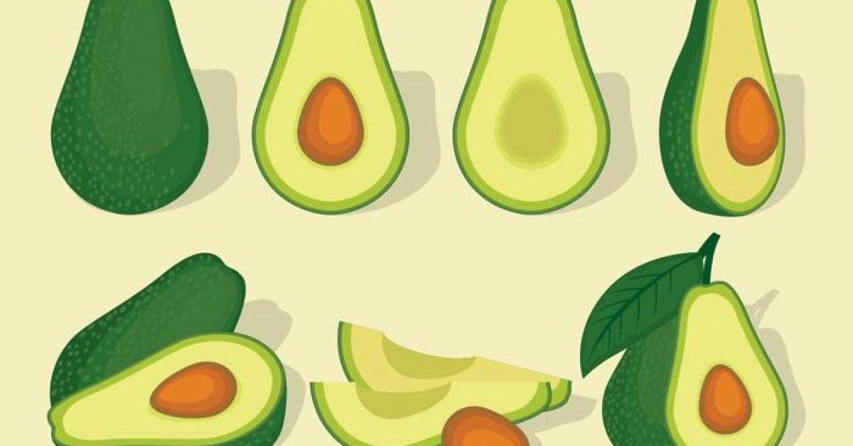 【酪梨圖片】35套 Illustrator 酪梨圖案下載,酪梨素材推薦款