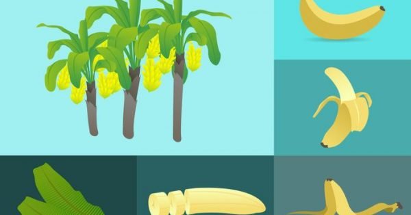 【香蕉圖案】72款Illustrator 香蕉圖案AI素材免費下載,香蕉圖片首選