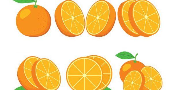 【橘子圖片】68套 Illustrator 橘子圖案ai下載,橘子素材推薦