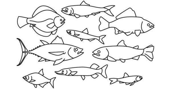 【小魚卡通圖】38套 Illustrator 小魚圖騰下載,小魚圖畫推薦款