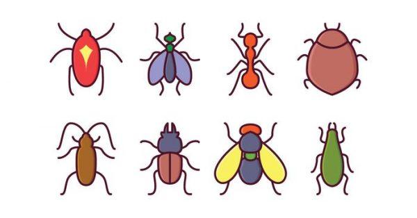【螞蟻卡通圖】31套 Illustrator 螞蟻圖案下載,螞蟻圖片推薦款