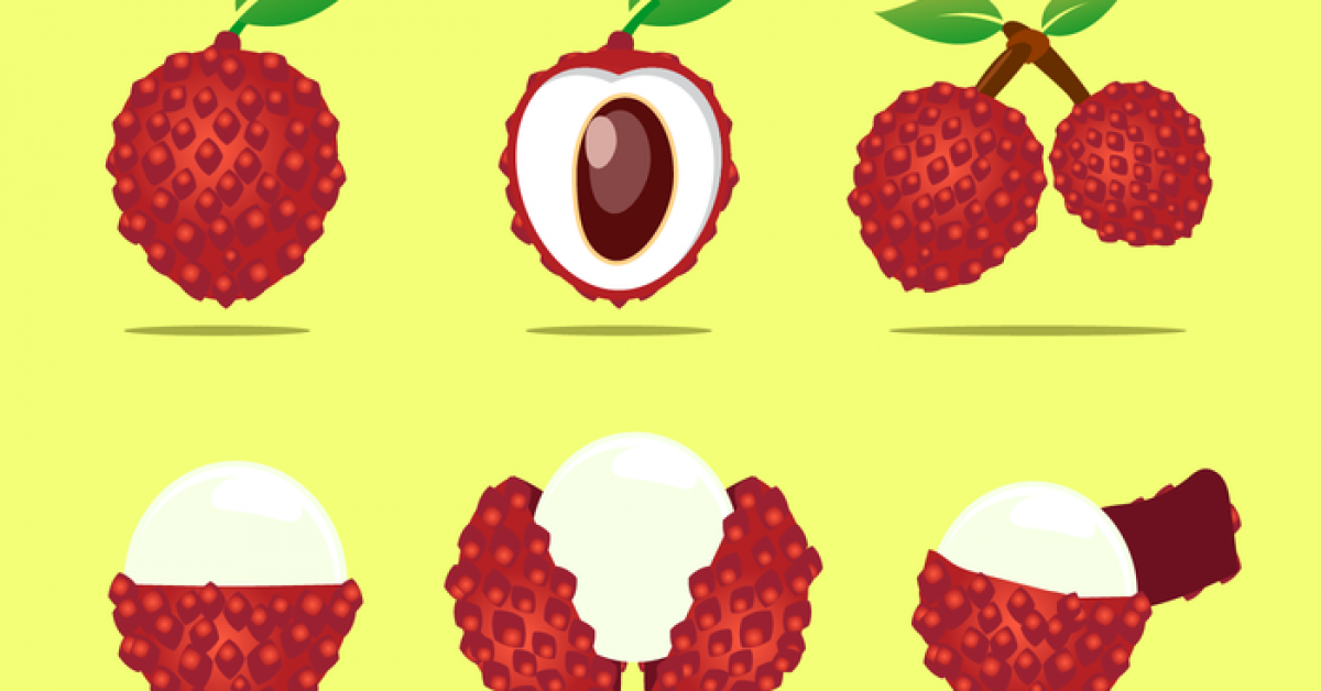 【荔枝圖片】41款 Illustrator AI荔枝圖片素材下載,荔枝素材推薦款
