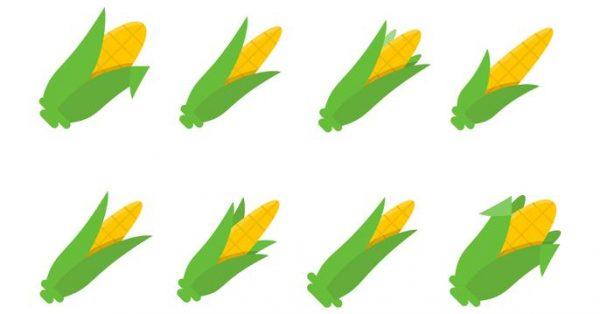 【玉米圖片】70套 Illustrator 玉米圖案下載,玉米卡通圖推薦款