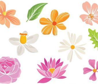 【蓮花圖片】30套 Illustrator 蓮花圖案下載,蓮花圖騰推薦款