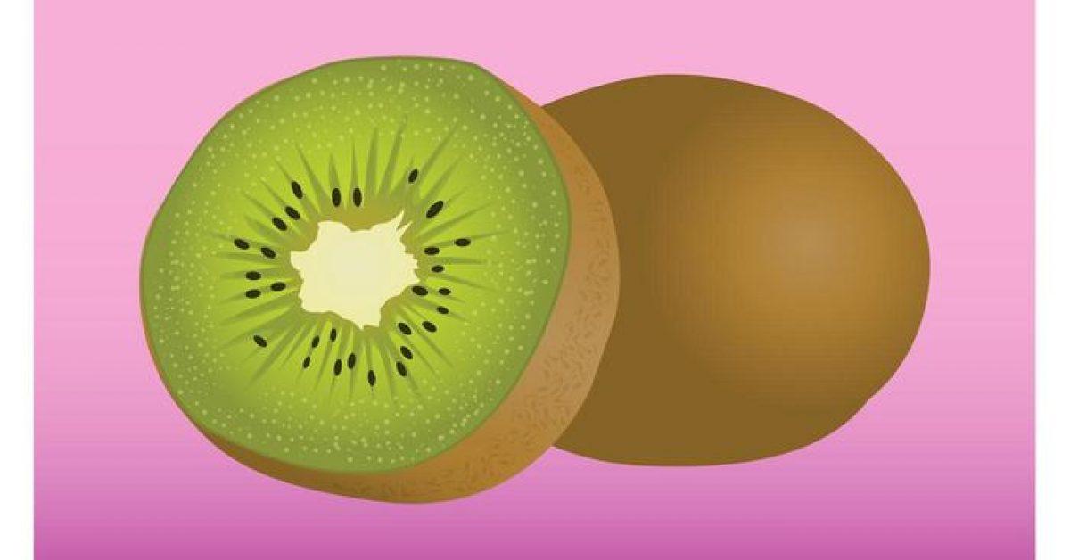 【奇異果圖片】28套 Illustrator 奇異果圖案下載,奇異果素材推薦款