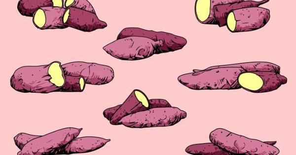 【芋頭圖片】50套 Illustrator 芋頭圖卡通下載,芋頭圖案推薦款
