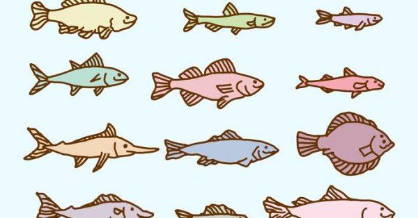 【小魚圖案】39套 Illustrator 小魚 q版圖下載,小魚符號推薦款