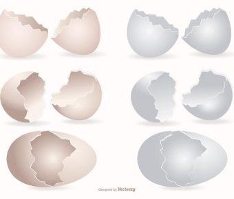 【雞蛋圖片】36套 Illustrator 雞蛋卡通圖下載,蛋圖片推薦款