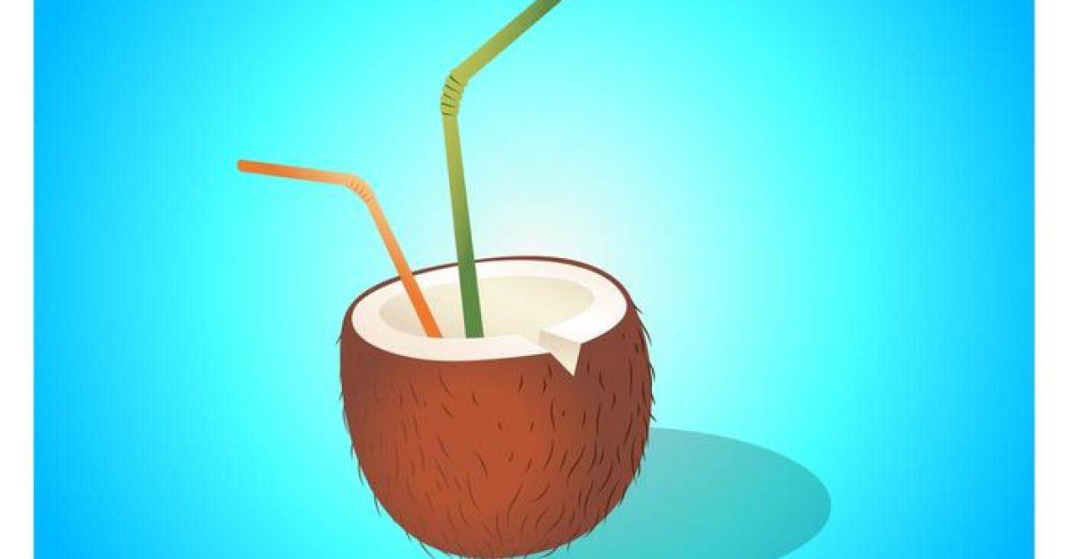 【椰子圖片】30套 Illustrator 椰子素材下載,椰子 logo推薦款