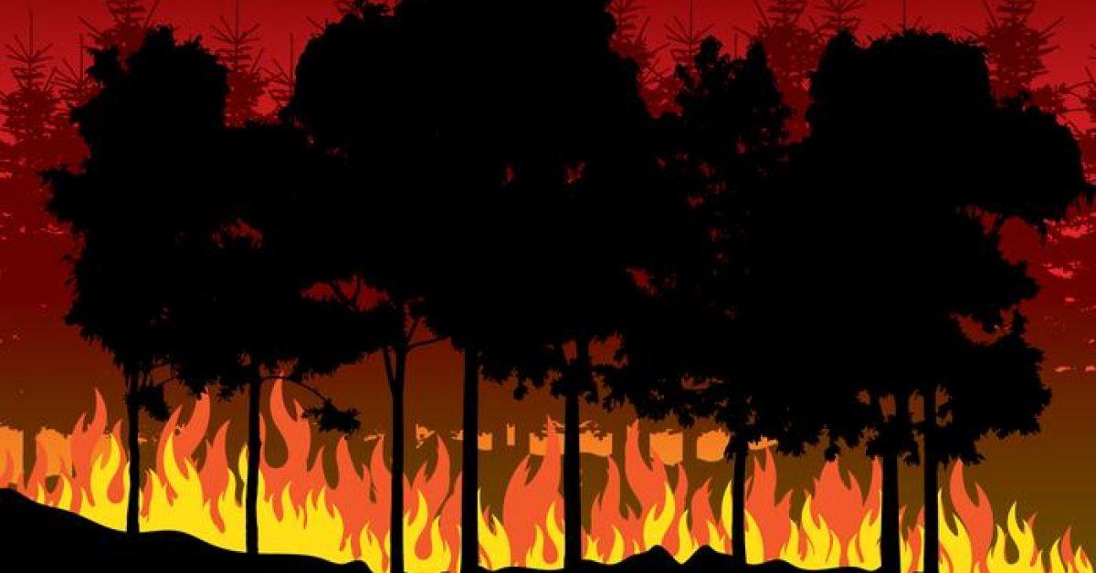 【火焰素材】35套 Illustrator 火焰圖騰下載,火焰圖案推薦款