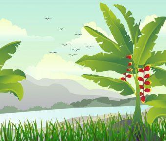 【叢林素材】29套 Illustrator 叢林背景下載,叢林插畫推薦款
