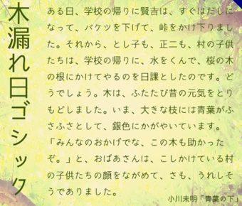【梅花字體】日系黑板風格梅花字體下載,支援繁體中文