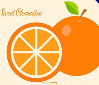 【橘子圖片】精選35款橘子圖片下載,橘子圖免費推薦款