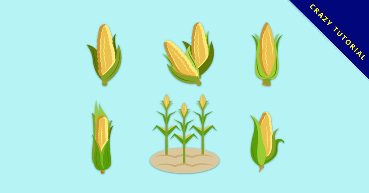 【玉米圖片】精選35款玉米圖片下載