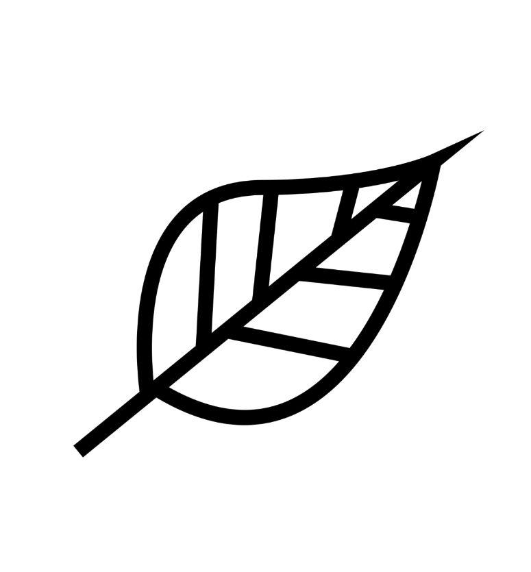 【蕾丝笔刷】18款PS花边蕾丝笔刷下载,蕾丝边框首选