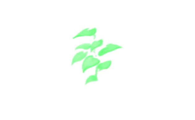 【树叶笔刷】4款专业级PHOTOSHOP树叶笔刷下载