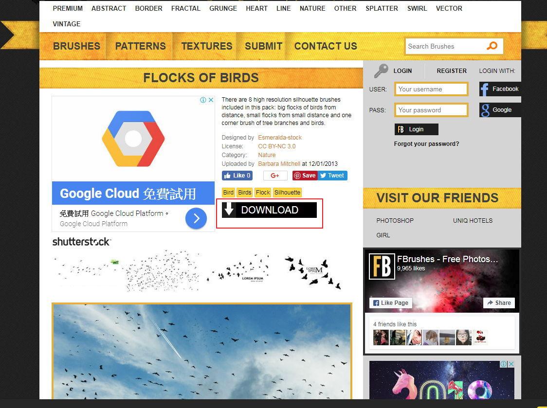 【小鸟剪影】8种高画质鸟类剪影笔刷下载