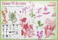 【花瓣笔刷】41套专业版PHOTOSHOP 花瓣笔刷免费下载