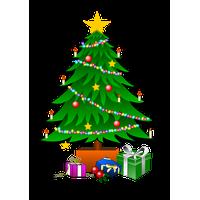 Christmas Tree Photos<B srcset=