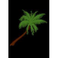 Tree Image<B srcset=