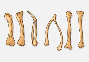 【鸡腿图片】36套 Illustrator 鸡腿图案下载,鸡腿照片推荐款