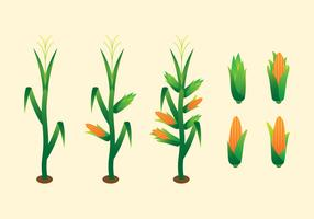 【玉米图片】70套 Illustrator 玉米图案下载,玉米卡通图推荐款