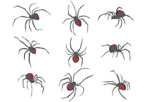 【蜘蛛图片】40套 illustrator 蜘蛛图案下载,蜘蛛网素材推荐