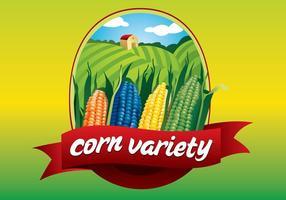 【玉米图片】精选35款玉米图片下载,玉米图案免费推荐款