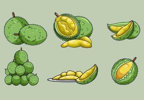 【榴梿图片】38套 Illustrator 榴梿图案下载,榴梿素材推荐款