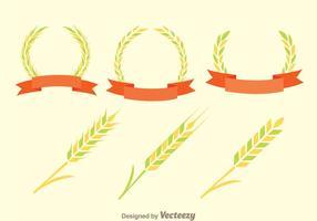 【玉米图片】精选35款玉米图片下载,玉米插图免费推荐款