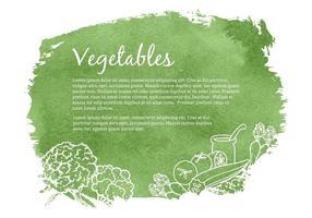 【蔬菜图片】精选35款蔬菜图片下载,蔬菜卡通免费推荐款