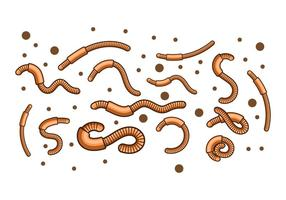 Earth Worm Illustration Vector
