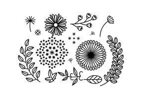 【花边图库】65套illustrator 花边边框设计素材下载,欧式花边推荐