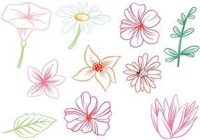 【莲花图片】30套 Illustrator 莲花图案下载,莲花图腾推荐款