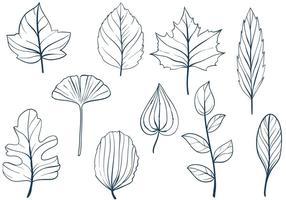 【叶子素材】70套 illustrator AI叶子素材下载,叶子图案专用款