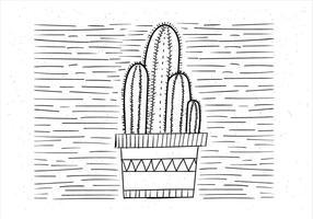 【仙人掌卡通图】31套 Illustrator 仙人掌图片下载,仙人掌图案推荐款